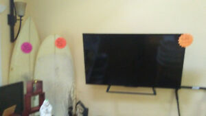 "Sony 48"" TV and Wall Mount"