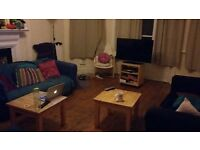 Double room available in large, friendly house!