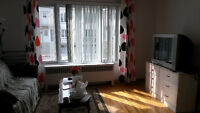 4 1/2 Renovated apartment to share only 3 minites to Monk metro