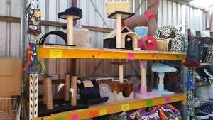 CAT SCRATCHING POST, CAT BED, CAT PLAY TOYS Skye Frankston Area Preview