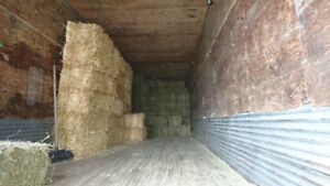 Straw and Horse hay for sale and in the yard