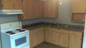 Freshly Renovated Semi For Rent - 3 Bedrooms,  2 Bathrooms! Stratford Kitchener Area image 2