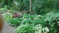 horticulturist/personal gardener (montreal/plateau)