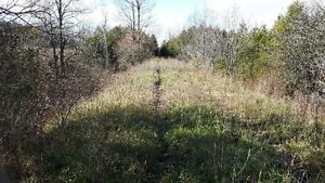 FANTASTIC 47 ACRE PARCEL ON THE EDGE OF TOWN Kitchener / Waterloo Kitchener Area image 2