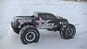 ECX RC Ruckus 1/10 Scale Monster Truck (New in the Box) Windsor Region Ontario image 3