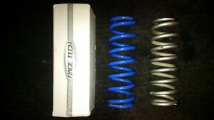 Race Tech 5.3kg and 5.5kg Shock Spring
