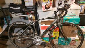 Specialized Sectuer