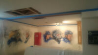 Drywall & Painting  Custom Services