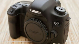 Canon 5D MK III Body w/ extra battery and 16Gb CF card
