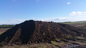 Good top soil stripped from field and piled for years