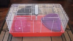 Rabbit cage & carrier London Ontario image 1