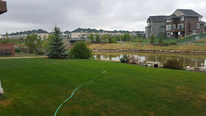 Executive home on Canals in Airdrie