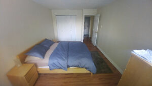Superbe Condo -- sous-location 40$ jour / sublet 40$ daily