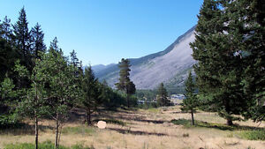 Crowsnest Pass scenic mountain view of Frank Slide -price reduce