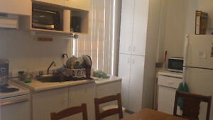 2 bedroom apartment in the McGill ghetto for sublet from June 1