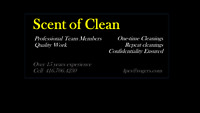Cleaner for weekend jobs