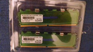 2 x 512MB Mushkin DDR2-667 Ram with Lifetime warranty