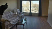 1 bedroom in a 2 bedroom apartment available - Whyte Ave