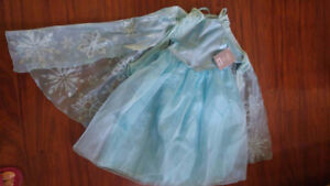 Frozen and Fairy  costumes