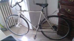 Egg shell . Miele  xl frame tall bike