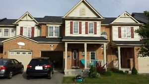 Beautiful Freehold 3BR,2.5Bath Townhouse-Rent from June/July2016
