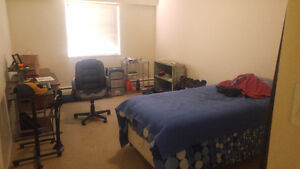 $880 Room in 2 bedroom/1 bathroom for rent (month to month)