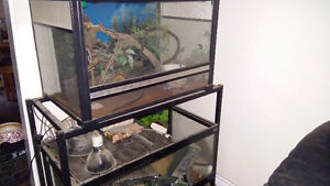 Two tanks and tank stand everything included bedding lights plan