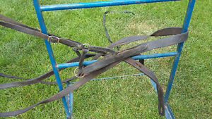 light horse harness, single Strathcona County Edmonton Area image 1