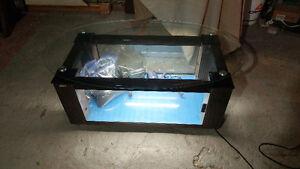 Belle table aquarium