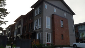 Beautiful BRAND NEW 3 bedroom townhouse in South Surrey for rent