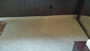 Beige/Taupe Carpet (Like New) London Ontario image 1