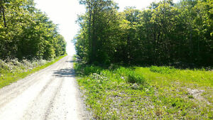 Manitoulin Island Mindemoya Rockville Road Access Bush Lot