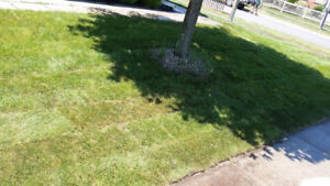 Durham Region Hardscape- Sod package from $1.00 sq ft