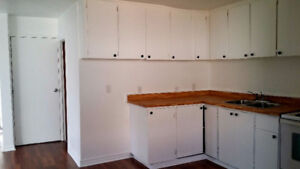 Newly renovated 2bdr. Large Kitchen & Living area. Ur New Home