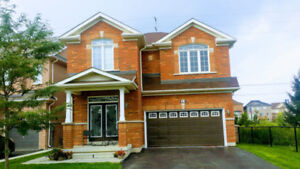 Gorgeous Detached House with  Basement Finished Brampton