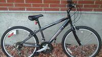 24 inch Triumph challenger bike