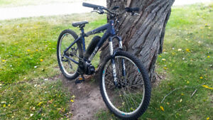 350W Electric Mountain bike