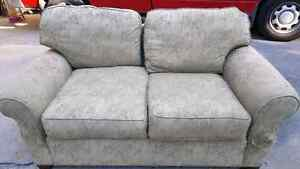 Matching Set - couch and love seat