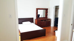 Executive Room in the Heart of Sandy Hill! **Available July 1st*
