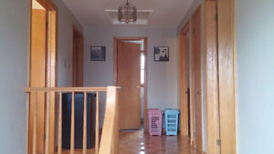 Room Rent for FEMALE RESIDENTS- close to Western(all inclusive) London Ontario image 10