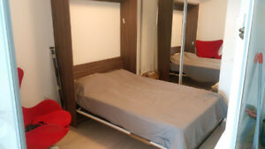 Mirror front Double Murphy Bed