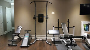 Home Gym Package with Hex dumbells and rack