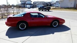 Reduced 1991 Trans Am