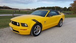2006 Mustang GT for sale