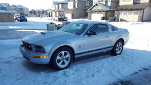 2007 Ford Mustang Fully Loaded HEATED LTHR Sts Winter Ts Low KM