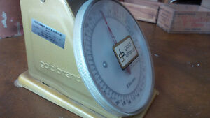 Vintage Look Kitchen Scale, Gold Brand Kitchener / Waterloo Kitchener Area image 2