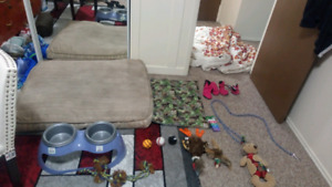 dog lot REDUCED
