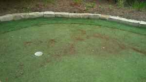 Synthetic Turf Reconditioning and Putting Greens London Ontario image 5