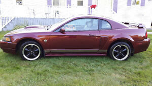 2004 Ford Mustang GT V8 40th Ann.
