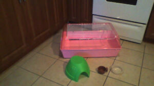 Cage for small pets (Almost New) only $30 WOW